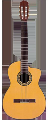 takamine guitars body shapes. Black Bedroom Furniture Sets. Home Design Ideas