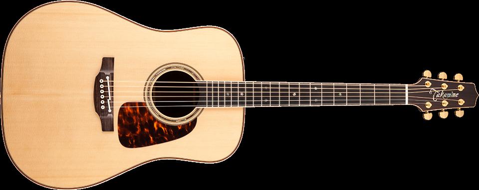 Takamine Pro-Series Guitars